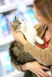Porträt der Frau ihre Katze halten und betrachtend Lizenzfreie Stockfotos
