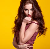 Porträt der Frau mit dem langen braunen Haar der Schönheit Lizenzfreies Stockfoto