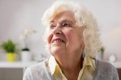 Porträt der glücklichen älteren Frau lizenzfreie stockbilder