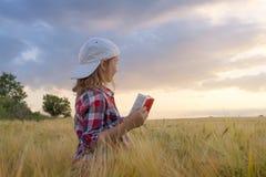 Porträt der glücklichen schönen jungen Frau Auf dem Gebiet des Weizens stockbilder