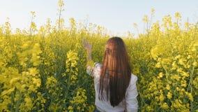 Porträt der hinteren Ansicht des jungen Mädchens gehend auf dem Rapsgebiet Langsame Bewegung stock video