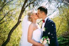 Porträt der Hochzeitspaare im Frühjahr küssen Natur-Nahaufnahme Kissi Lizenzfreie Stockfotografie