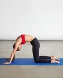Porträt der jungen Frau Übung für Rückseite in der Turnhalle tuend Stockfotos