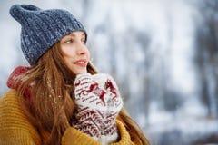 Porträt der jungen Frau des Winters Schönheit frohes vorbildliches Girl, das Spaß im Winterpark lacht und hat Schöne junge Frau lizenzfreies stockfoto