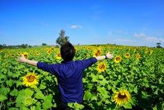 Porträt der jungen Frau entspannend mit Sonnenblumenfeld, blauem Himmel, Wolke und Berg bei Lopburi in Thailand stockbilder