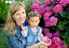 Porträt der jungen Frau mit dem Kind über die blühende Hortensie Stockbild