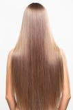 Porträt der jungen Frau mit dem langen Haar Stockbild