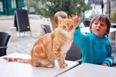 Porträt der Katze, Kamera betrachtend, kleiner Junge, der die Katze caresing ist Lizenzfreies Stockfoto