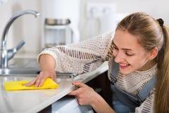 Porträt der lächelnden jungen Hausfraureinigung mit Versorgungen Stockfoto