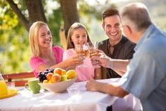 Porträt der reizenden Familie, die Picknick hat stockfotos