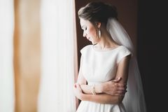 Porträt der schönen Braut mit Modeschleier am Hochzeitsmorgen lizenzfreie stockfotos
