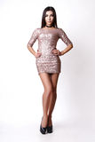 Porträt der schönen Brunettefrau im rosa Kleid Modefotoschuß Lizenzfreies Stockbild