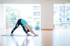 Porträt der schönen jungen Frau, die zuhause Yoga genießt Jogi Gi lizenzfreies stockfoto