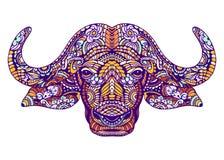 Porträt des Büffels lizenzfreie stockfotografie