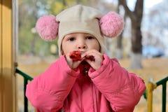 Porträt des Babys in einem Hut mit Pom-poms mit einem Spielzeug Stockfoto