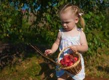 Porträt des blonden Mädchens mit roten Äpfeln Lizenzfreie Stockbilder
