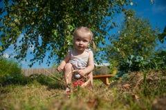 Porträt des blonden Mädchens mit roten Äpfeln Lizenzfreies Stockfoto