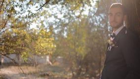 Porträt des Bräutigams Junger Mann nahe dem Baum stock video