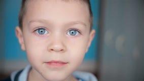 Porträt des entzückenden kleinen Jungen, der Kamera betrachtet stock footage