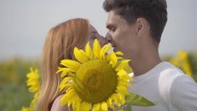 Porträt des glücklichen Paars küssend bei der Abdeckung ihrer Gesichter mit der großen Sonnenblume auf dem Sonnenblumenfeld Die J stock video