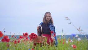 Porträt des hübschen jungen Mädchens, das auf dem Mohnblumengebiet erfasst Blumen im Weidenkorb geht Verbindung mit Natur stock footage