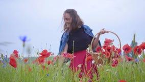 Porträt des hübschen Mädchens gehend auf dem Mohnblumengebiet, das Blumen im Weidenkorb erfasst Verbindung mit Natur Gr?n und stock video