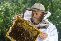 Porträt des Imkers mit Bienenwabe Lizenzfreies Stockbild