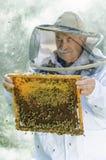 Porträt des Imkers mit Bienenwabe Lizenzfreie Stockfotos