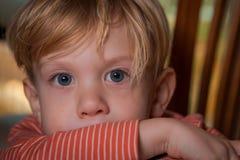 Porträt des Jungen Stockbilder