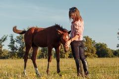 Porträt des jungen Mädchens mit einem Fohlen auf dem Bauernhof lizenzfreies stockbild