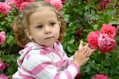 Porträt des kleinen durchdachten Mädchens mit Rosen Stockbilder