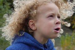 Porträt des kleinen Jungen blond und gelockt Stockfotos