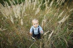 Porträt des kleinen Jungen im hohen Gras Stockfoto