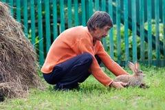 Porträt des kleinen Kaninchens auf Hintergrund des grünen Grases Lizenzfreie Stockfotografie