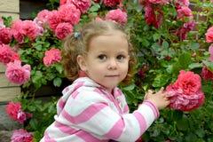Porträt des kleinen Mädchens unter den blühenden Rosen Lizenzfreies Stockbild