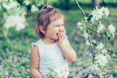 Porträt des kleinen netten ungepflegten Mädchens, das draußen Spaß unter blühenden Bäumen an einem sonnigen Sommertag lacht und h Stockbilder