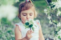 Porträt des kleinen netten ungepflegten Mädchens, das draußen Spaß unter blühenden Bäumen an einem sonnigen Sommertag lacht und h Lizenzfreie Stockfotografie