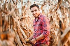 Porträt des Landwirts mit Mais, lächelndes Mannernten lizenzfreie stockbilder