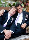 Porträt des liebevollen homosexuellen verheirateten Paars Stockfotografie