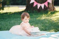 Porträt des netten entzückenden kaukasischen Babys mit dunkelbraunen Augen im rosa Ballettröckchenkleid ihren ersten Geburtstag f Stockfotografie