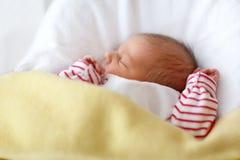 Porträt des netten entzückenden neugeborenen Babyschlafens Stockfotografie
