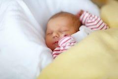 Porträt des netten entzückenden neugeborenen Babyschlafens Lizenzfreie Stockfotografie