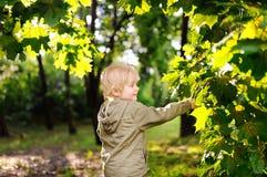 Porträt des netten glücklichen kleinen Jungen, der Spaß im Sommerpark nach Regen hat Lizenzfreies Stockfoto