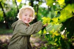 Porträt des netten glücklichen kleinen Jungen, der Spaß im Sommerpark nach Regen hat Stockbilder