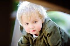 Porträt des netten kleinen Jungen auf Spielplatz Stockbilder