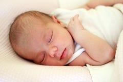 Portr?t des netten neugeborenen Babys, das auf einem rosa Bett unter beige Decke schl?ft stockfoto