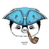 Porträt des Pinguins im Seemannhut und mit Tabakpfeife Auch im corel abgehobenen Betrag Stockfoto