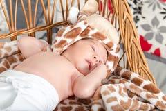 Porträt des schönen Jungen liegend im Weidenkorb Lizenzfreie Stockfotografie