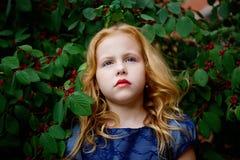 Porträt des schönen kleinen Mädchens in einem blauen Kleid lizenzfreie stockbilder