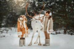 Porträt des schönen kleinen Mädchens im Pelzmantel am Winterwald stockfotografie